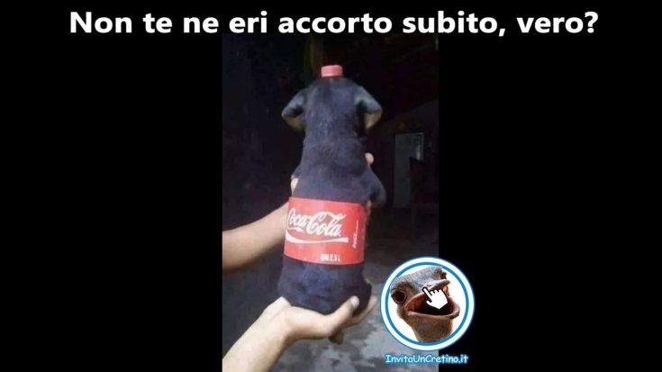 cane coca cola illusione foto divertenti